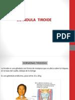 TiroIdes 2018