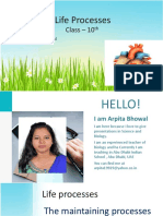 lifeprocesses-120620100700-phpapp01