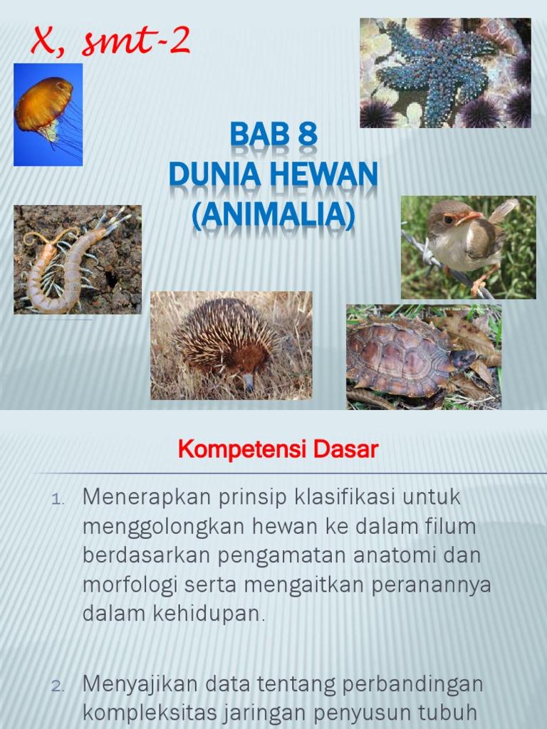 Sebutkan Contoh Spesies Invertebrata Yang Dapat ...
