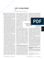 Appraising the brain's energy budget