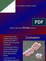 DNA, Mitosi e Meiosi