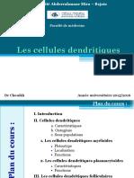 cellules_dendritiques