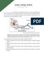 Conhecendo a Biologia Cerebral