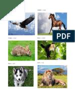 Animales en Quiche