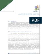 VALORACIÓN DE IMPACTOS AMBIENTALES