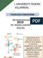 FISIOLOGIA ENDOCRINA 2019
