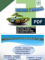 (5) Flujos de Materia y Energía Grupo 1