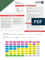 Licenciatura en Administracion de Negocios Internacionales Plan de Estudios