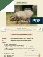 S Ganado Porcino
