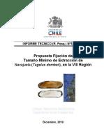 RPESQ_141-2010_Propuesta_Medidas_Adm_Navajuela_VIII_Región