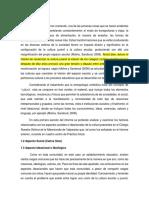 Sección 1.1 informe práctica.docx