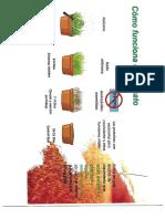 Cómo funciona el glifosato.pdf