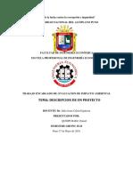 DESCRIPCION DEL PROYECTO crosty.pdf