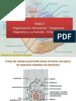 Apresto 2019 Tema 5 - Organizacion Estructural y Funcional de La Celula Animal
