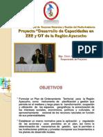 directiva001_2019EF6301