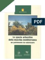 Specie Arbustive Macchia Mediterranea