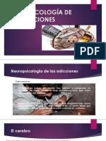 Neuropsicología de Las Adicciones