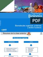 Clase 4 Biomoléculas Orgánicas Proteínas y Ácidos Nucleicos
