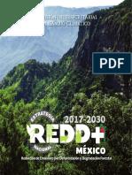 Estrategia-Nacional-REDD+-2017-2030.pdf