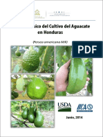 Manual Del Aguacate