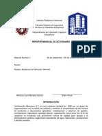 Reporte Mensual II.docx