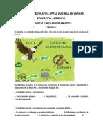 CUESTIONARIO TIPO ICFES INSTITUCIONAL.docx