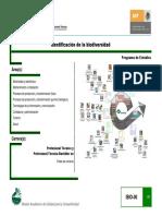 06_Identificacion_biodiversidad.pdf