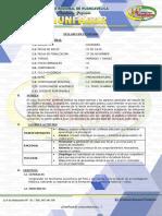 16.- ECONOMÍA.docx