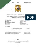 Analisis-Completo-de-Agua.docx