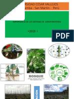 Sistemas Agroforestales Clase 13 - 2019 I