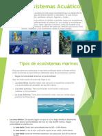 Ecosistemas Acuáticos.pptx
