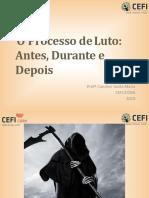 luto antecipatorio basico final 2019.pdf