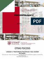 Sesión N°4- Otras Psicosis