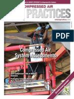 CA Best Practise.pdf