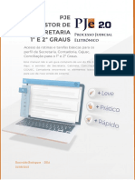 Manual PJe 2 0 Perfil de Secretaria 1 e 2 Graus Revisto