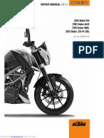 390_duke_eu_2013.pdf