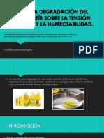 Efecto de La Degradación Del Aceite de Freír.