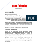 Expo Sistema Endocrino Biología.docx