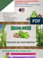 Agro Sachainchi