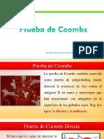 COOMBS 2019 Practica