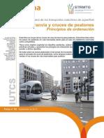 Tranvia y Cruce de Peatones