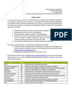 Pauta_de_trabajo_final (1).pdf