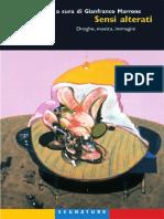 Sensi_alterati._Droghe_musica_immagini.pdf
