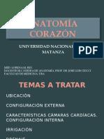 Anatomía Corazón (UNLAM) (1)