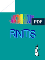 Anatomi Hidung & Rinitis