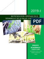 Ramirez Nuñez (2019) Ensayo Argumentativo Biotecnología