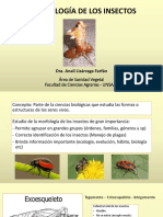 Entomologia Agrícola 10-07-18