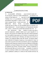 CIVIL HORTENCIA.doc