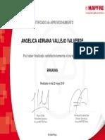 BRIGADAS_Certificado de curso.pdf