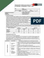 DPCC 1º Unidad I.E.T. Cesar Vallejo S.J.M.